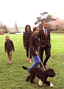 Bo and The First Family